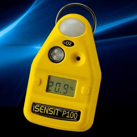 P100 Personal Gas Monitor